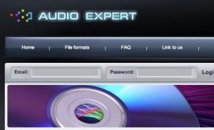 AudioExpert - Free Online Voice Recorder