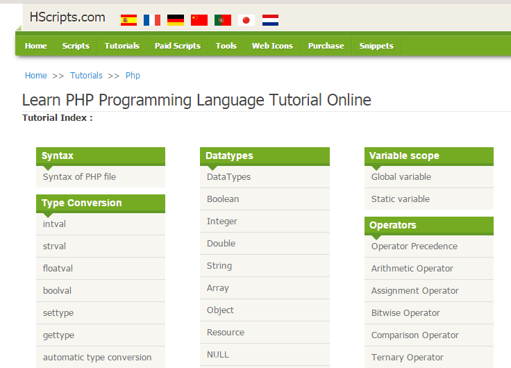 Learn about website coding language